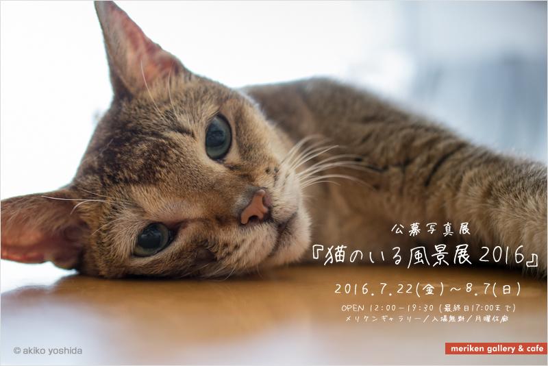 公募写真展「猫のいる風景展2016」 開催概要